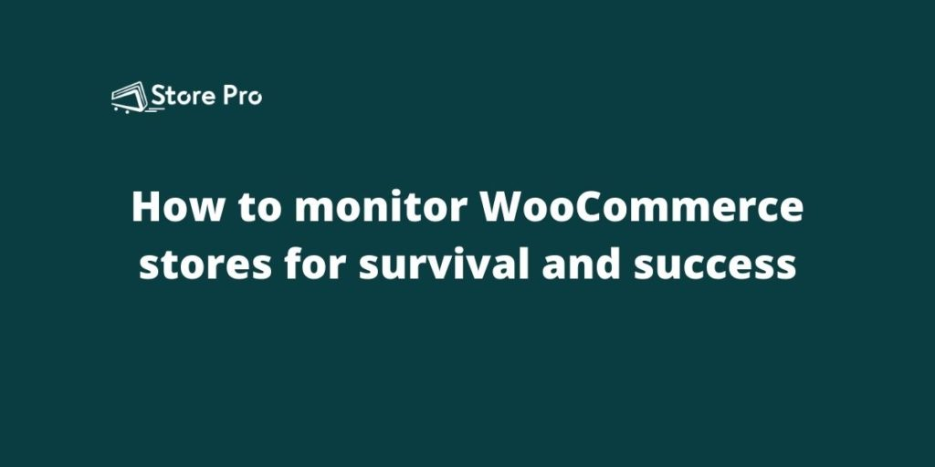How to monitor WooCommerce stores for survival and success